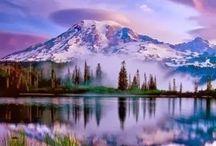 culorile naturii