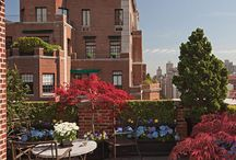 Rooftop Gardens / by Ann Patten