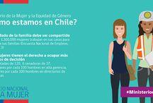 Ministerio de la Mujer / Datos y explicación del nuevo Ministerio de la Mujer y la Equidad de Género del Gobierno de Chile