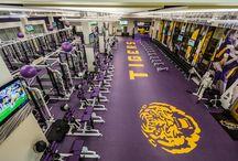 new gym #tigers