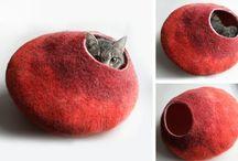 Cat Items / by Jess C.
