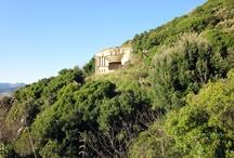 Parco di Portofino / Trekking along Gulf of Tigullio