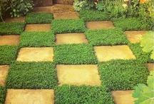 Zahrada - tipy