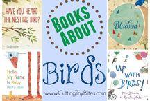 Preschool: Birds