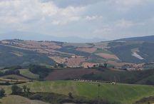 Paesaggi di Fratte Rosa / Tutti i paesaggi che si possono vedere a Fratte Rosa dalle mura antiche del suo castello