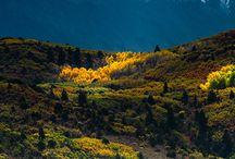 Rocky Mountain High...Colorado