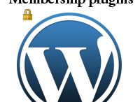 The Top 10 WordPress / My Top 10 WordPress themes, plugins, sliders, galleries, ThemeForest files, Membership plugins, and more - save time and go to http://www.thetop10wordpress.com/
