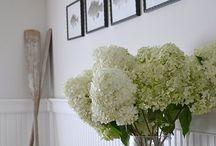 Home Ideas / by SPA POCKET & MAGNIFAZINE
