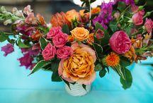 flowers & plants / by Samara