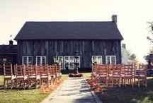 Wedding / by Michelle Husband