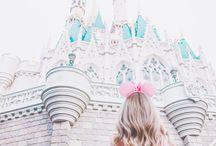Bryllupsreisen / Disneyland honeymoon