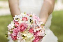 Wedding / Marriage, family bonding