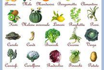 Frutti e ortaggi di stagione
