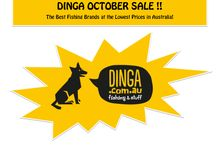 DINGA OCTOBER SALE IS NOW ON! / Dinga.com.au, a Fishing tackle store offers great discount on different product of quality brands on this October Sale!