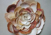 Seashell DIY / I love seashells and this is my board of inspiration and DIY with seashells.