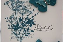 Stampin Up Butterflys / by Patty