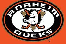 Ducks wallpaper