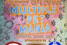 Multiple Pet Mania / All things more than one pet.