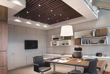 Ofis tavan