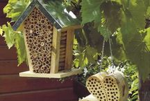 Bee Yourself / www.beeyourself.com.au Australian Native Stingless Bee Hives and anything bee and or honey related.