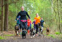 Top Tips On Getting Fit With Your Dog / Training tips and advice on how to get the most out of running with your dog.