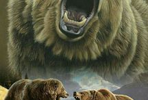 Bears+Medveď