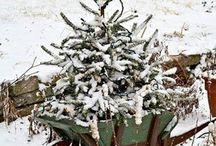 Vianoce na vidieku