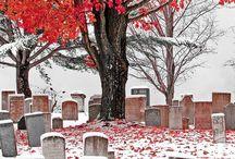 New England - I Miss It / by Samonia Byford