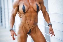 Musculatora