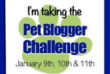 Blogging Special Days