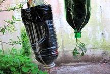 Herb Garden / Ideas for herb garden in containers