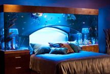 My Future Bedroom ideas