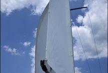 Sailing / Sea life