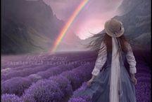 lavender ........
