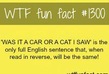 English fun facts