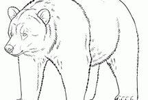 Native American Totem Animals / Totem Tiere zeichnen!
