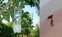 repelente para moscas