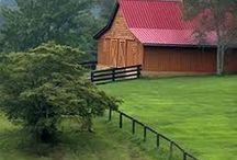 Barns / by Diane Ruggles