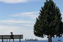 84. Gratitude
