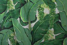 jungle design / Design for jungle mural