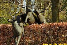 Stag Garden Ornaments / Stag and Deer statues and sculptures for your garden. Magnificent bronze animal garden statues that bring life and excitement to any garden or outdoor space. #stag #deer #doe #animal #bronze #statue #statues #sculpture #garden #ornaments #ornament #lifesize - www.adamsbronze.com