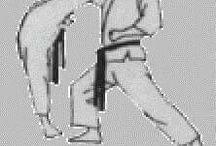 Shorin Ryu shidokan karate