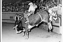 Rodeo History