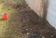 dirty hands ✋ / Min trädgård/my garden in sweden