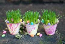 DIY Flower Pots / by Diana Trotter