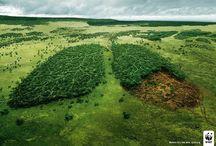 WWF #Save the planet - Ratujmy planetę / Plakaty z hasłami z róznych ogólnoświatowych kampanii prowadzonych przez WWF