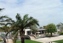 Hyatt Danang