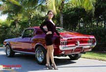 Mustang Mussel