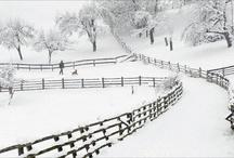 art- snow / by Tnger Cloe