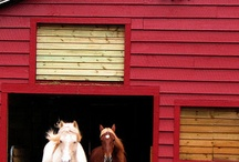 just barns i love / by Patricia Broughman